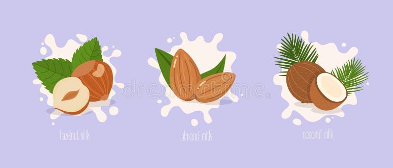 Migdał, hazelnut i kokosowy mleko, plusk mleka również zwrócić corel ilustracji wektora ilustracja wektor