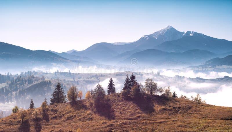 Mighty carpathian mountains. Magnificent panoramic view of mighty carpathian mountains. Beauty of wild virgin Ukrainian nature stock photos