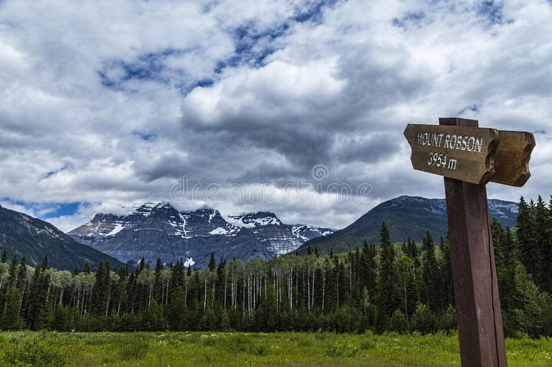 Mighty Mount Robson royalty free stock photo