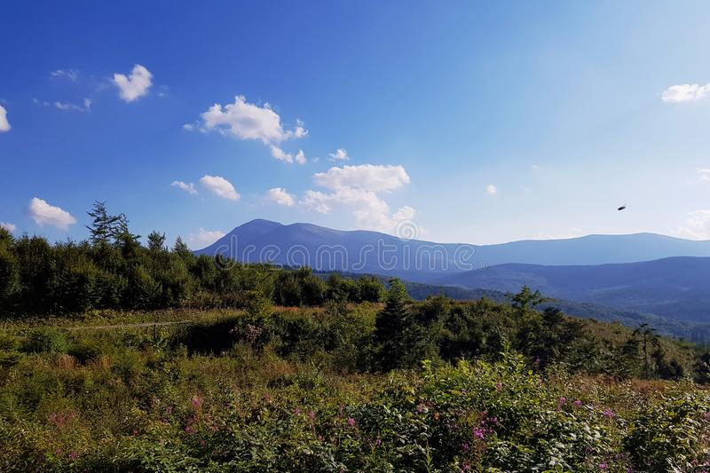 The mighty mountains of the Carpathians in the distance. Sunny day. Ukraine. The mighty mountains of the Carpathians in the distance. Sunny day. Carpathians royalty free stock photos
