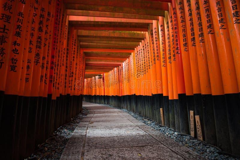 Migliaia di portoni di torii a Fushimi Inari shrine a Kyoto, Giappone immagine stock
