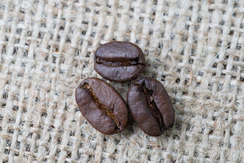 Migliore bevanda di affari dei chicchi di caff? e concetto scelti della bevanda, chiuso su dei chicchi di caff? arrostiti sul fon fotografie stock libere da diritti