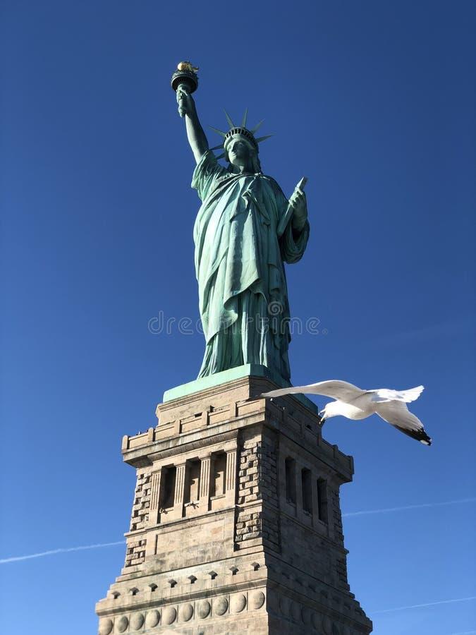Migliore colpo della statua della libertà fotografia stock libera da diritti