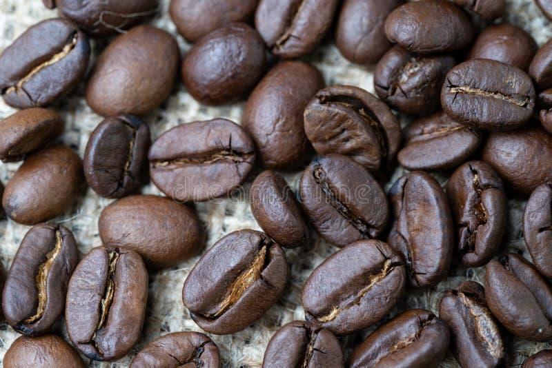 Migliori bevanda di affari dei chicchi di caffè e concetto scelti della bevanda, Cl fotografie stock libere da diritti