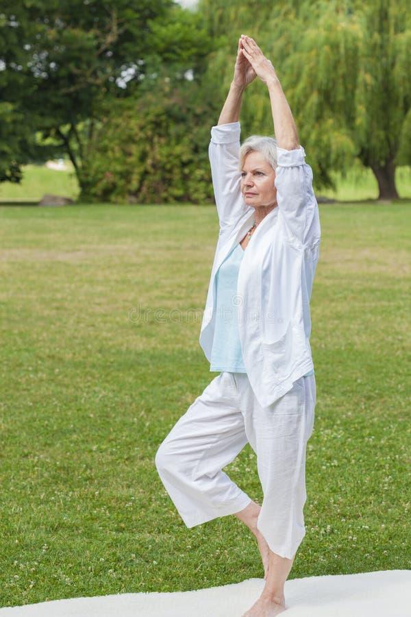 Migliori donne del ager che praticano 'chi' del tai della formica di yoga immagini stock