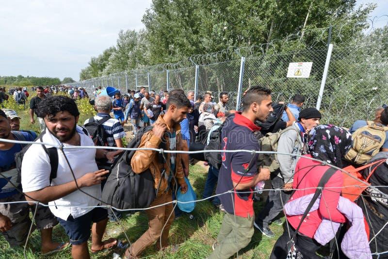 Migranter från Mellanösten som väntar på den ungerska gränsen arkivfoton