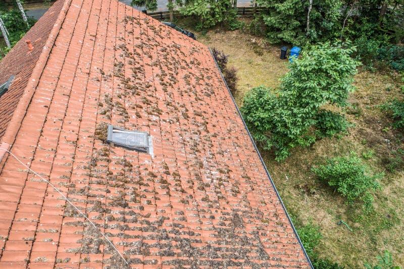 Migrar sobre o telhado vermelho de uma única casa da família com uma chaminé e uma antena satélite para a inspeção, o controle e  imagem de stock royalty free