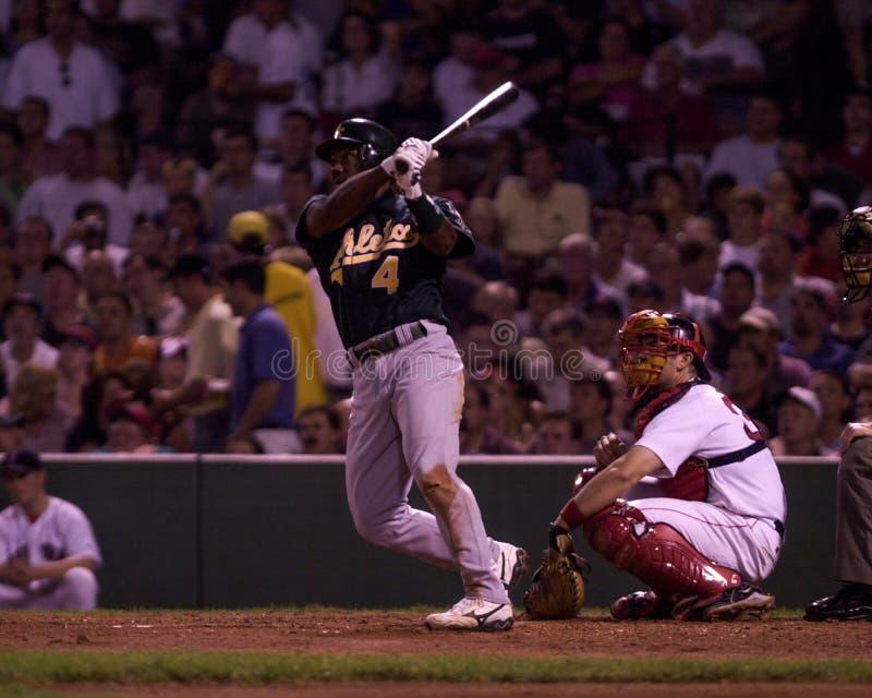 Miguel Tejada, interbase di Oakland Athletics immagini stock libere da diritti