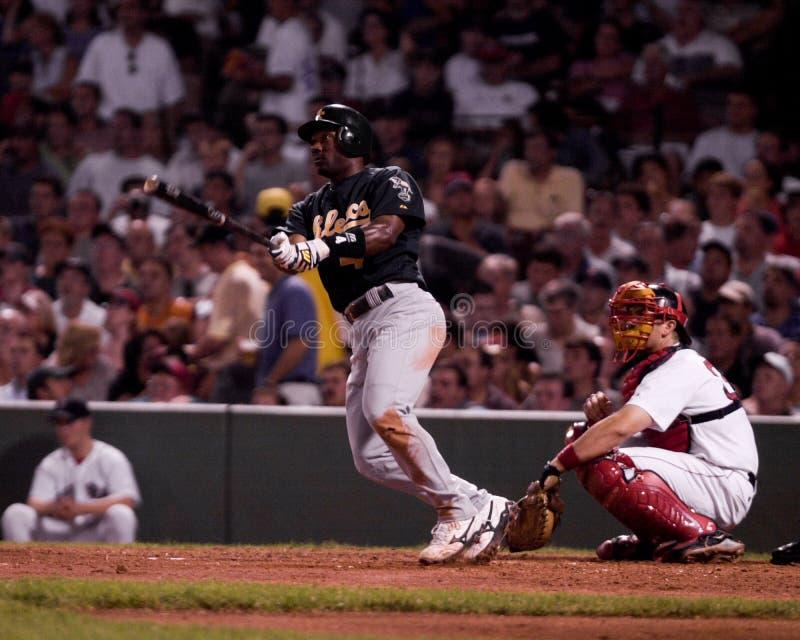 Miguel Tejada, Oakland Athletics shortstop στοκ εικόνες