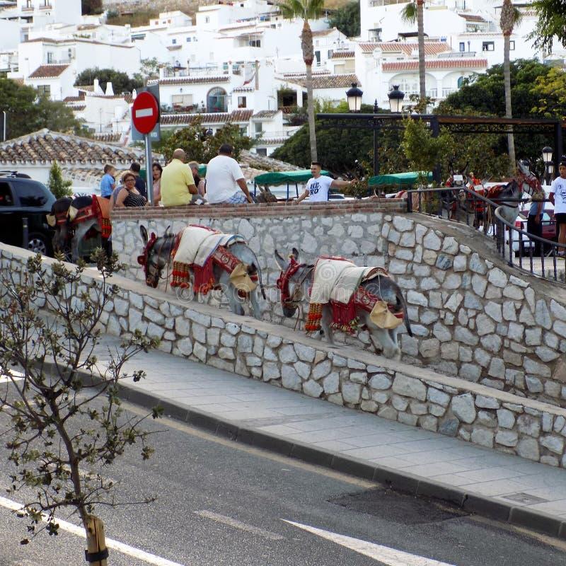 Mijas-asini taxi-Andalusia - EUROPA immagini stock