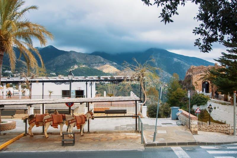MIJAS, ESPANHA - 8 DE FEVEREIRO DE 2015: Táxi do asno da vila branca t imagens de stock royalty free