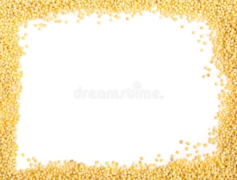 Mijo de oro, una semilla libre del grano del gluten, marco sobre blanco imagen de archivo libre de regalías