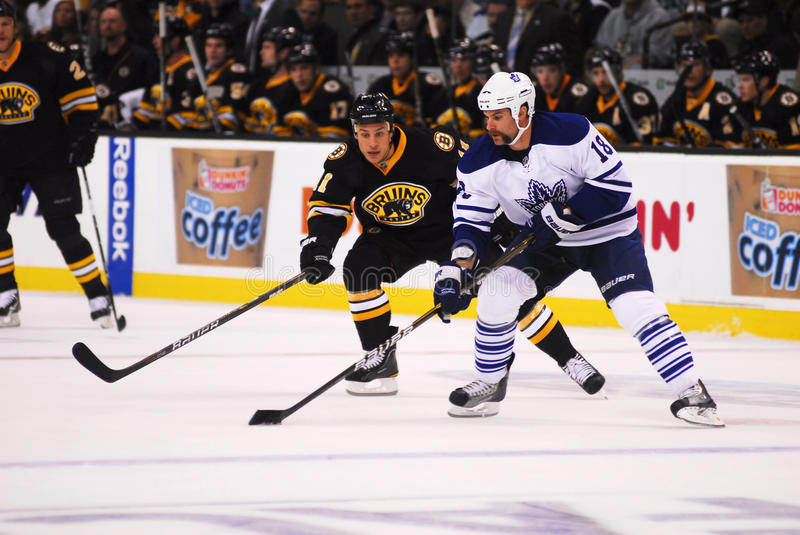 Mike Brown Toronto Mapleleafs. Mike Brown (18) skates with the puck against Boston Bruins center Greg Campbell (11) during a game played October 28, 2010 at the royalty free stock image