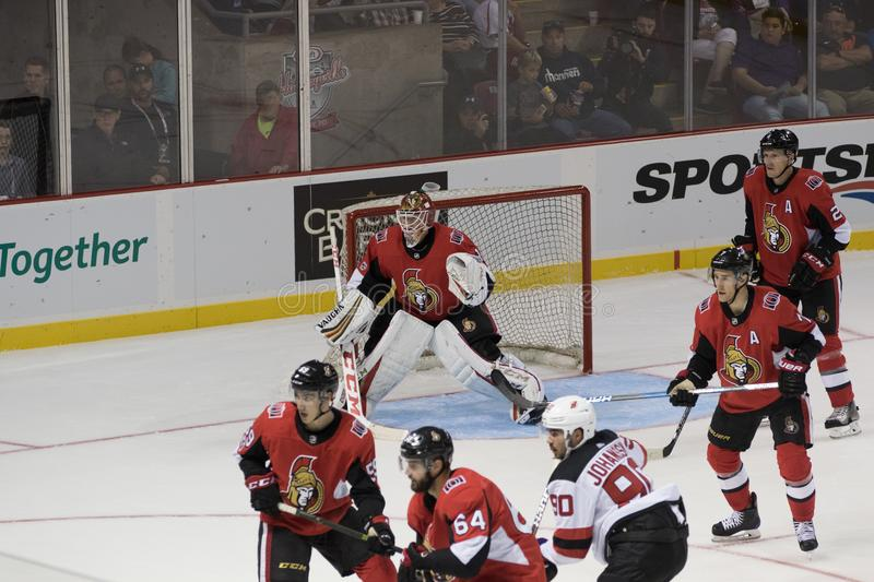 Mike Condon van de Ottawa Senators stock foto