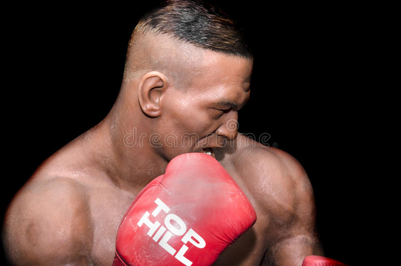 Mike Tyson. January 25, 2014 - Uzhgorod: wax figure of Mike Tyson - Exhibition of Wax Museum Art, Uzhgorod stock image
