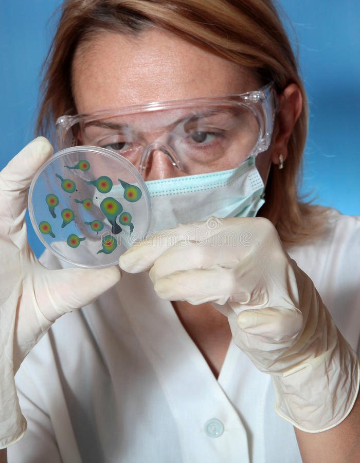 Mikrobiologie lizenzfreies stockbild