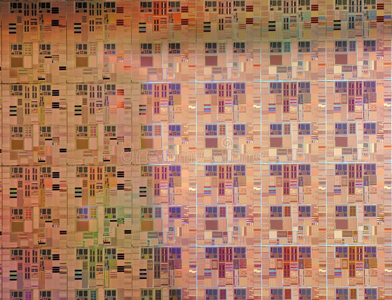 mikroprocessorer royaltyfri foto