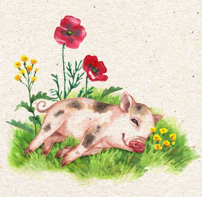 Mikroschwein, das auf grünem Gras stillsteht lizenzfreie abbildung