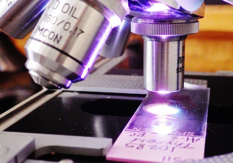 Mikroskopów obiektywni obiektywy z patologii obruszeniem zdjęcie royalty free