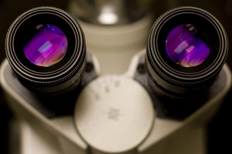 Mikroskopaugenstücke lizenzfreie stockfotos