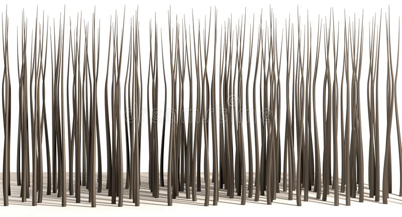 Mikroskopische Haar-Wurzeln lizenzfreies stockbild