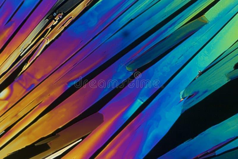 mikroskopiska kristaller royaltyfri foto