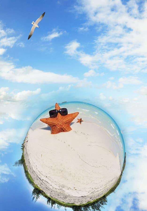 Mikrowelt des tropischen Strandes mit Starfish lizenzfreie stockfotos