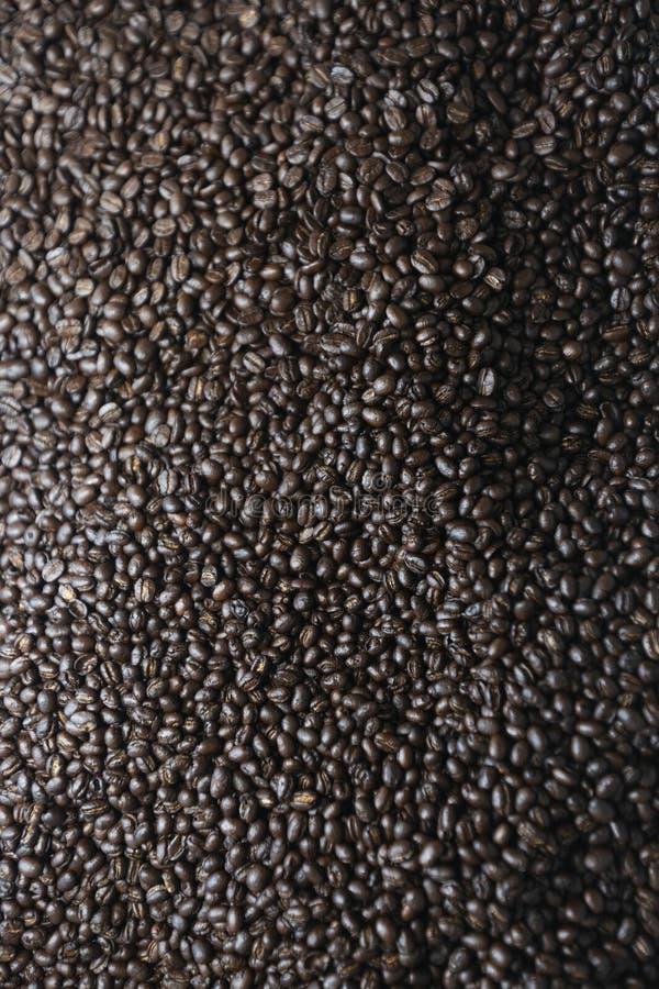Mikstura różni rodzaje kawowe fasole zdjęcia royalty free