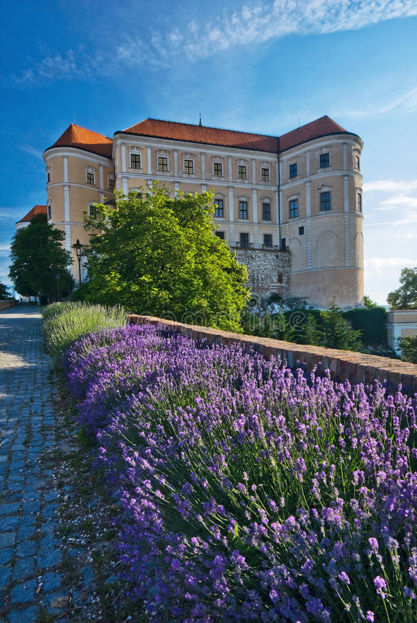 Mikulov castle. Flowers and Mikulov Castle, Moravia, Czech Republic at summer stock photos