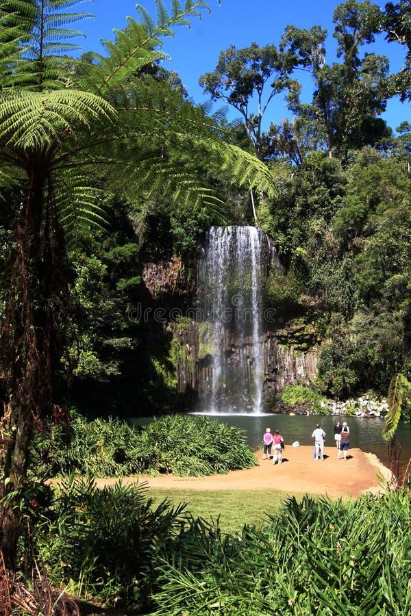 Free Mila Mila Waterfall Royalty Free Stock Images - 12969169