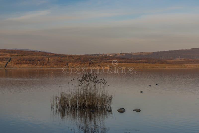 Milada lake in winter cold orange evening in north Bohemia royalty free stock photos