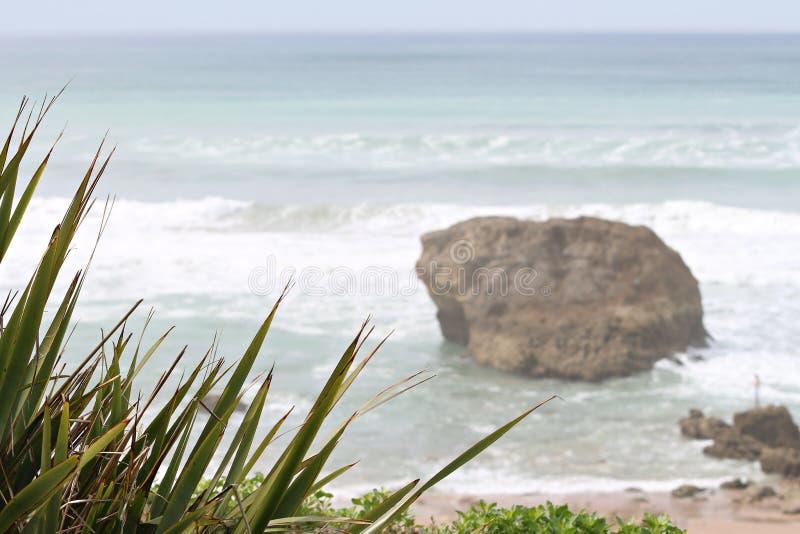 Milady пляжа в Биаррице стоковая фотография