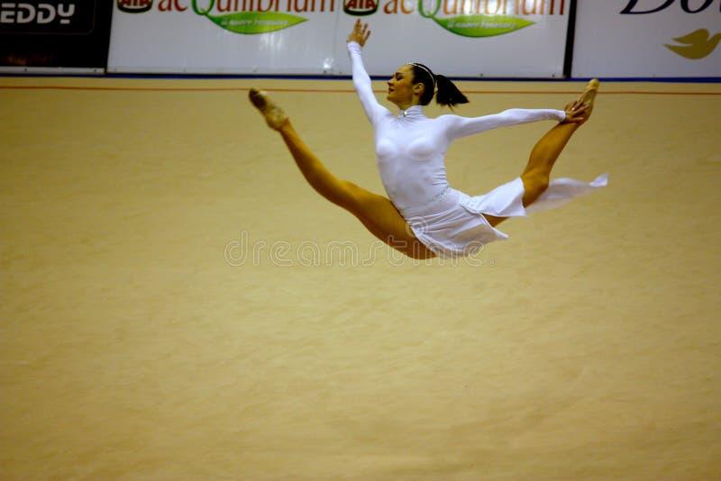 Milan Gymnastic Grand Prix 2008 royalty free stock images