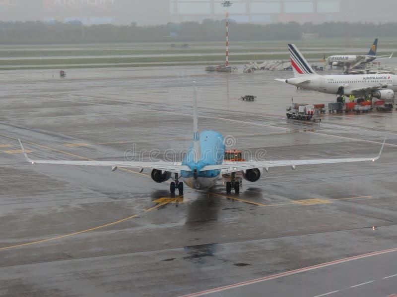 KLM Boeing 737-800 taxiing in Milan Malpensa royalty free stock photo