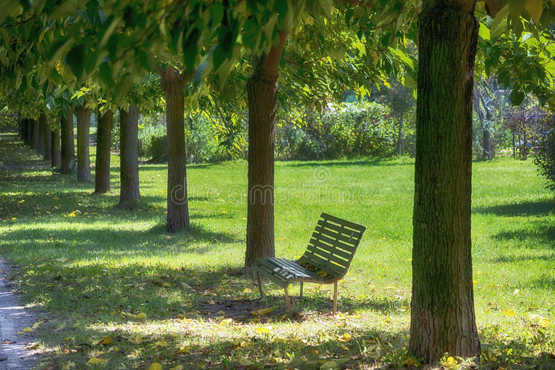 Milan: path in the park. Milan (Lombardy, Italy): path and bench in the park known as Parco Nord, at late summer royalty free stock photography