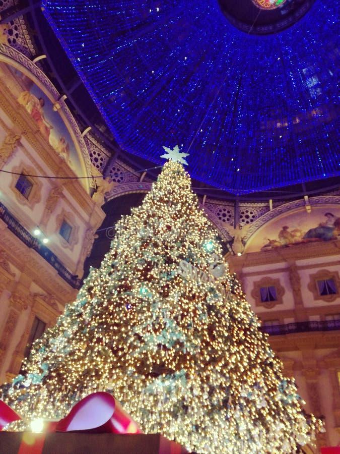 Milano obraz royalty free