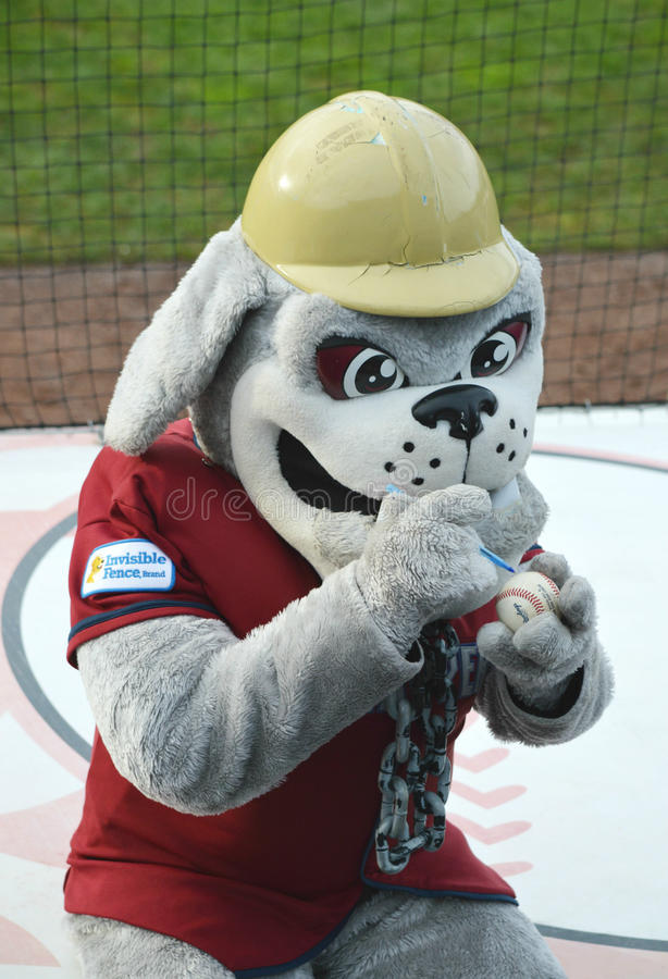 MiLB Mahoning Valley Scrappers Mascot Scrappy royalty free stock image