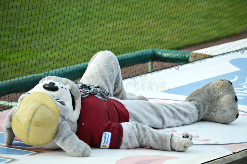 MiLB Mascot Scrappy Dog-Tired During Doubleheader. Scrappy, mascot for the Mahoning Valley Scrappers, laying on the teams dugout during a doubleheader. The stock photo