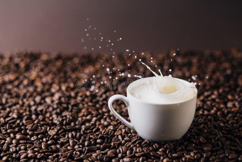 Milch, die über Kaffeebohnen spritzt lizenzfreie stockbilder