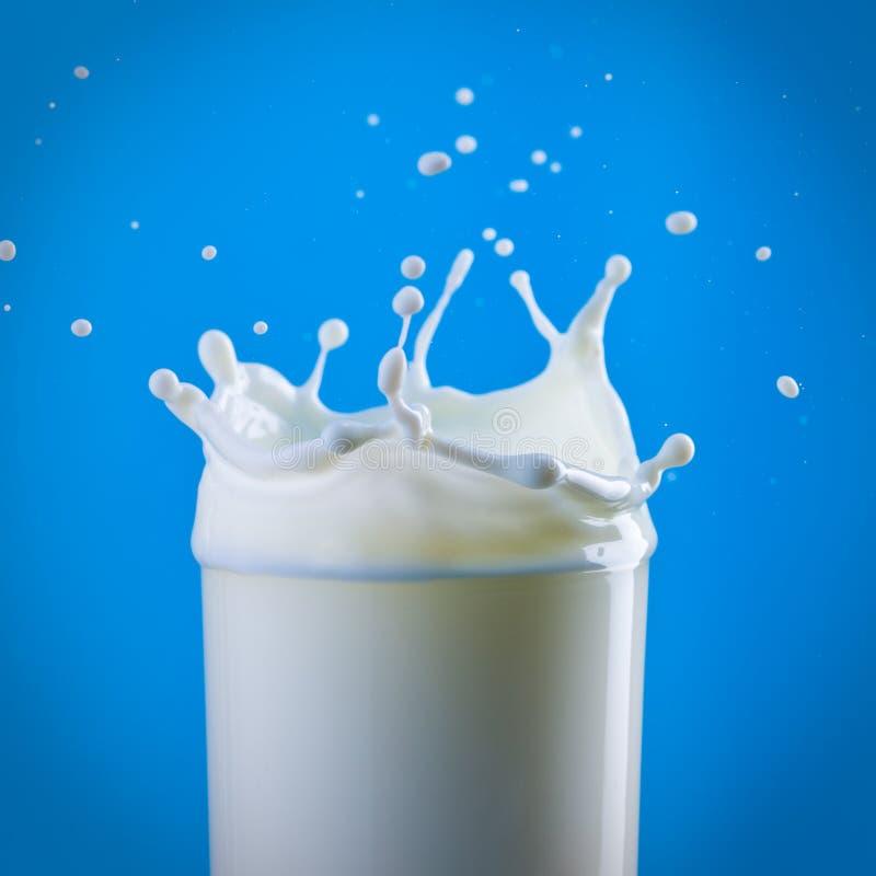 Milch, die im Glas spritzt stockbilder