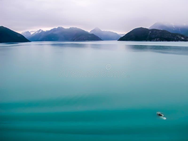 Milchiger Türkis-Grün-Gletscher-Ozean mit Bergen auf Horizont stockfotos
