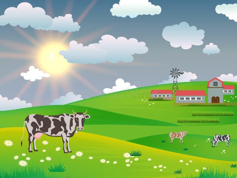 Milchkühe auf einem Gebiet nahe einem Bauernhof auf einem Hintergrund der Morgensonne stock abbildung