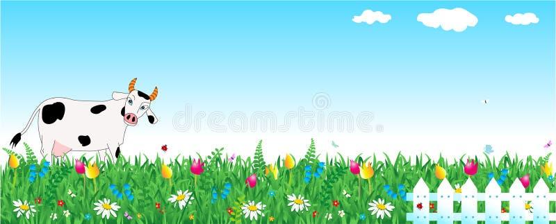 Milchkuh, Weide, Zaun stock abbildung