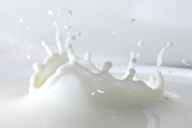 Milchspritzen lizenzfreies stockfoto