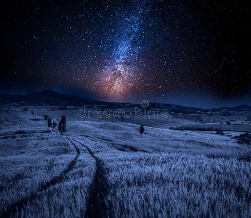 Milchstraße und Felder des Weizens in Toskana, Italien lizenzfreie stockfotografie
