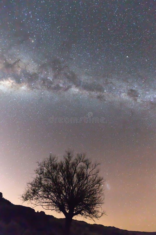 Milchstraße und heller Sternnächtlicher himmel über Patagonia stockfoto