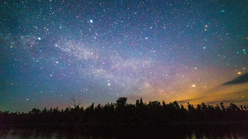 Milchstraße und Sterne über den Bäumen nachts lizenzfreie stockfotografie
