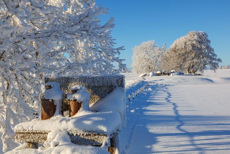 Milchturmständer in einer schönen schneebedeckten Winterlandschaft stockbild