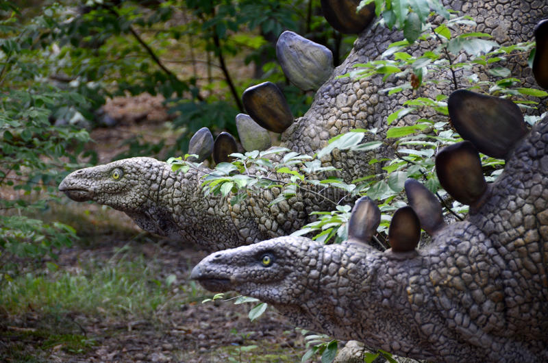 A mild, herbivorous two dinosaurs in the forest. Mild, two herbivorous dinosaurs in a deciduous forest. Small dinosaur heads stick out from the bushes. They royalty free stock photography