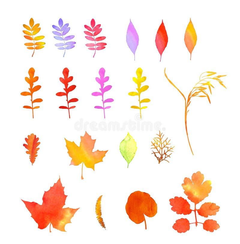 Mile widziany jesieni akwareli kolekcja ilustracji